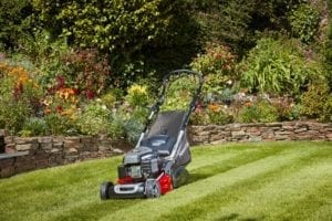 self propelled roller mowers